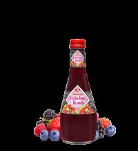 Bucher Gastro Fruchtkorb 20*0,25l