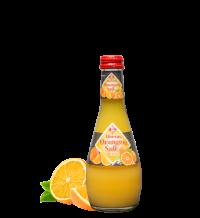 Bucher Gastro Orangensaft 20*0,25l