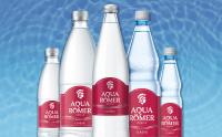 Aqua Römer viel Kohlensäure 12*1,0l rot