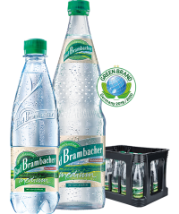 Bad Brambacher Medium PET 20x0,5l