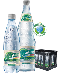 Bad Brambacher Naturell PET 20x0,5l