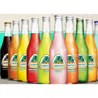Jarritos Grapefruit 24*0,37l